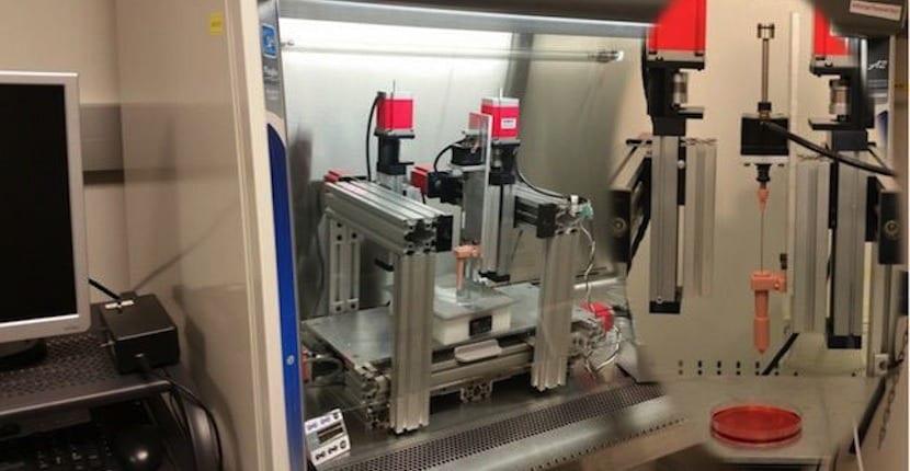 impresora de cartílagos