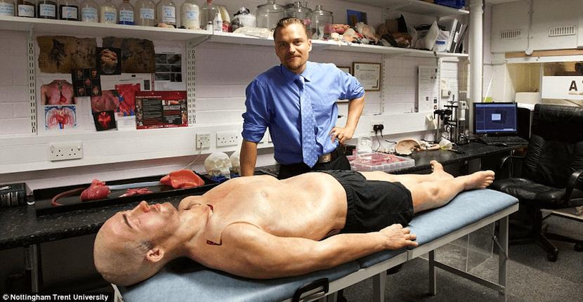 cuerpo humano impreso para ensayos médicos